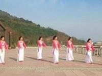 燕语芳菲广场舞《风雨醉情缘》原创舞蹈 正背面口令分解动作教学演示