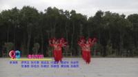 江西崇仁马安舞蹈二队广场舞 张灯结彩 表演 团队版