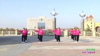 原阳快乐舞蹈队广场舞 张灯结彩 表演 团队版