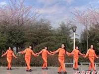 茉莉广场舞《又见雪花飞》原创现代舞 附正背面口令分解动作教学演示