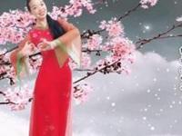 蘇州盛澤雨夜廣場舞《又見雪花飛》原創舞蹈 附正背面口令分解動作教學演示
