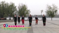 河南省南阳市99广场舞长风小区最美女人花舞蹈队广场舞  苗乡侗寨请你来 表演 团队版