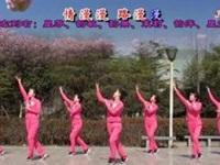 茉莉广场舞《情路弯弯》情人节特辑原创入门舞蹈 正背面口令分解动作教学演示