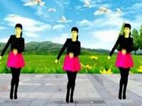 珍儿广场舞《2018发发发》原创32步附正背面口令分解动作教学演示