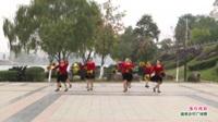 广西桂林市灌阳县官塘芳芳舞蹈队广场舞  张灯结彩. 表演 团队版