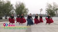 河南省南阳市99广场舞长风小区最美女人花舞蹈队广场舞  雪绒花 表演 团队版