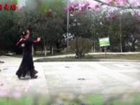 新丽莉舞蹈交谊舞慢三《情醉桃花源》原创舞蹈 正背面演示