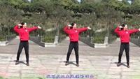 重庆叶子广场舞《心要痛到什么时候》原创附教学正背面演示及口令分解动作教学和背面演
