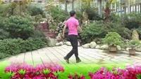 麻城吴章宏广场舞《请到草原来》正背面演示及口令分解动作教学和背面演