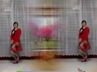 董兴花园广场舞《远走高飞》编舞紫静尔 正背面演示