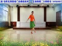 王梅舞蹈 新浏阳河 正背表演与动作分解