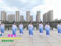 南陵天天艺术舞蹈 葬花吟 背面展示 完整版演示及口令分解动作教学