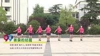 武汉市新洲区汪集服装街舞蹈队舞蹈 善良的姑娘 表演 团队版 完整版演示及口令分解动作教学