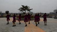 练寺女人如花广场舞《流年似水》口令分解动作教学