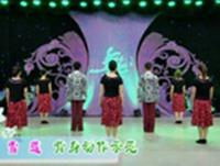楊藝廣場舞  雪蓮 背面展示 正背面演示及慢速口令教學