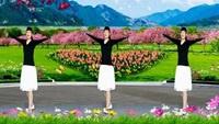 街心公园广场舞《女人花开》原创柔情女神节附教学正背面演示及口令分解动作教学