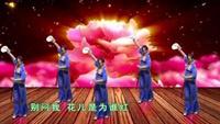〈女人花〉(原创)福建永安小小高广场舞 附教学分正背面演示及慢速口令教学