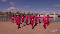 十三敖包后舞动青春广场舞 歌在飞 表演 原创附教学口令分解动作演示
