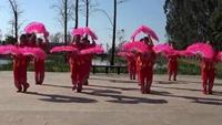 澂江广场舞沙坝映山红广场舞队《花蝴蝶》扇子舞经典正背面演示及口令分解动作教学