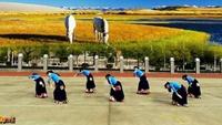 岳陽瓊之舞廣場舞《穿行》編舞:応子正背面演示及慢速口令教學