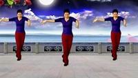 百度一號:桂華廣場舞《醉月亮》編舞青兒正背面演示及慢速口令教學