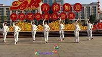 秀舞芳华广场舞《远走高飞》正反面演示及分解动作教学