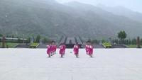 電機廠廣場舞蹈廣場舞  桃花美桃花開 表演 團隊版 口令分解動作教學