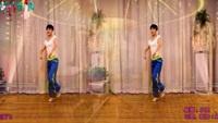 蝶恋习舞《远走高飞》编舞:小达老师,正反面演示完整版演示及分解教学演示