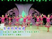 周思萍廣場舞 美麗的佩枯措 表演 原創附正背面教學口令分解動作演示