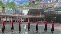 柳州彩虹健身队演绎《走出空城走不出想念》编舞春英附正背表演口令分解动作分解教学