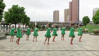 黃陂土廟佳麗舞蹈隊廣場舞 馬背情歌 表演 團隊版 附正背表演口令分解動作分解教學