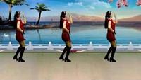 安化艾艾舞蹈《向上攀爬》排舞分解:三亚冬梅附正背面口令分解教学演示
