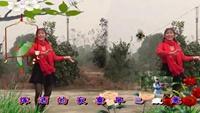 北风吹又吹 刘心珍 枝江市青鹤岭广场舞正反面演示及分解动作教学