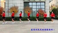 舞動長城廣場舞《風情萬種》編舞:周周老師正背面演示及口令分解動作教學