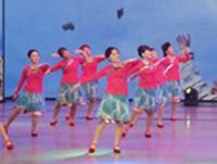 春晚 衡阳湘江玫瑰广场舞 祝福西藏 表演 口令分解动作教学