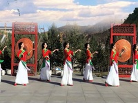 陕西延安飞鸿广场舞 好一朵女人花 表演