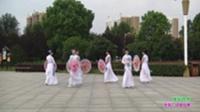 信阳映山红模特艺术团广场舞 苿莉芬芳 表演 团队版