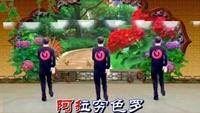 蕪湖三風廣場舞《飲酒歡歌》16步,原創附分解完整版演示及口令分解動作教學