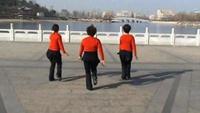 鹰歌燕舞队舞蹈《燃烧我的爱2》原创附正背面教学口令分解动作演示