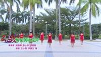 海南省海口市舞之夢健身舞隊廣場舞 桃花美桃花開 表演 團隊版 正反面演示及分解動作教學