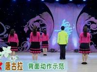 杨艺广场舞 唐古拉 背面展示