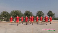 武漢新洲余春姐舞蹈隊廣場舞   對不起現在我才愛上你 表演 團隊版附正背面口令分解教學演示
