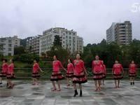 贺月秋广场舞 盛开的马兰花 正背表演