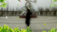 龙儿翩翩飞【自然美】广场舞原创  编舞龙儿翩翩飞完整版演示及口令分解动作教学