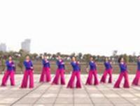 江西玲珑飞雨舞蹈 月落泉 表演 正背面演示及口令分解动作教学和背面演