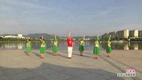 金溪同心舞蹈 月落泉 表演 完整版演示及分解教学演示