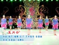 張春麗廣場舞 藍月谷 正背面口令分解動作教學演示