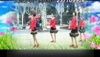 上海芳华舞蹈《心里藏着你》正反面演示及分解动作教学