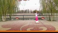 天津萍儿广场舞《月雨绵绵》原创附正背面教学口令分解动作演示