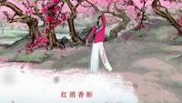 岳阳岳化小媳妇舞蹈《葬花吟》编舞:秦来财老师口令分解动作教学